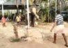 অভিনব দৃশ্য! গ্রামবাসীদের সঙ্গে ক্রিকেট খেলায় ব্যস্ত এই হাতি! দেখুন ভাইরাল ভিডিও